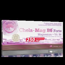 Chela-Mag B6®