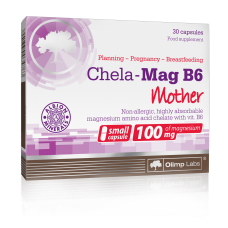 Chela-Mag B6 Mother
